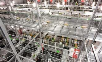 WITRON realisiert für Mercadona Tiefkühl-Logistikzentrum in Nordspanien