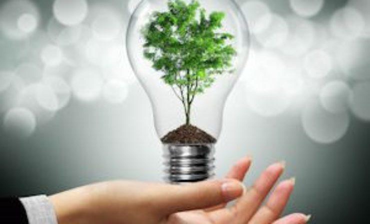 In vier Schritten zum nachhaltigen Supply-Chain-Management