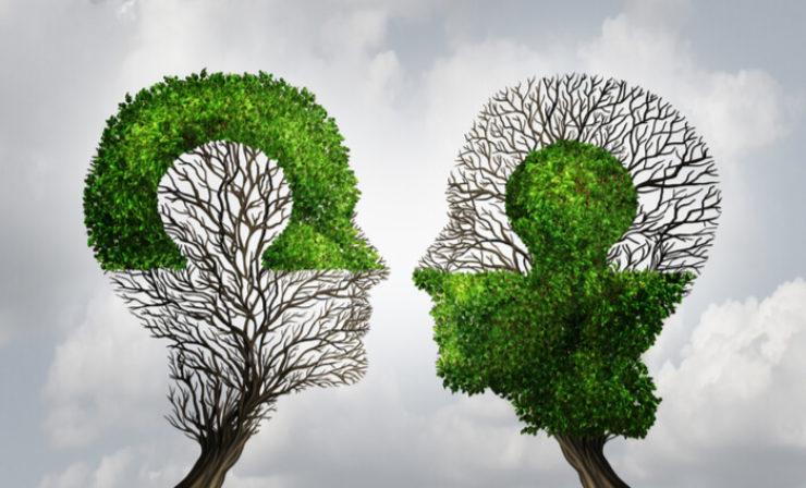 Umweltschutz: Hapag-Lloyd und Kühne + Nagel schließen Carbon and Sustainability Pact