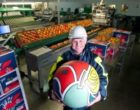 Worldwide Fruit doubles volumes with Fowler Welch