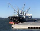 """Premiere beim Seehafen Wismar – Großschiff MV """"Panda"""" weiht neue Liegeplätze ein"""