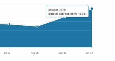 WEBSITE STATISTIK